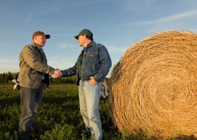 Mezőgazdasági szolgáltatás